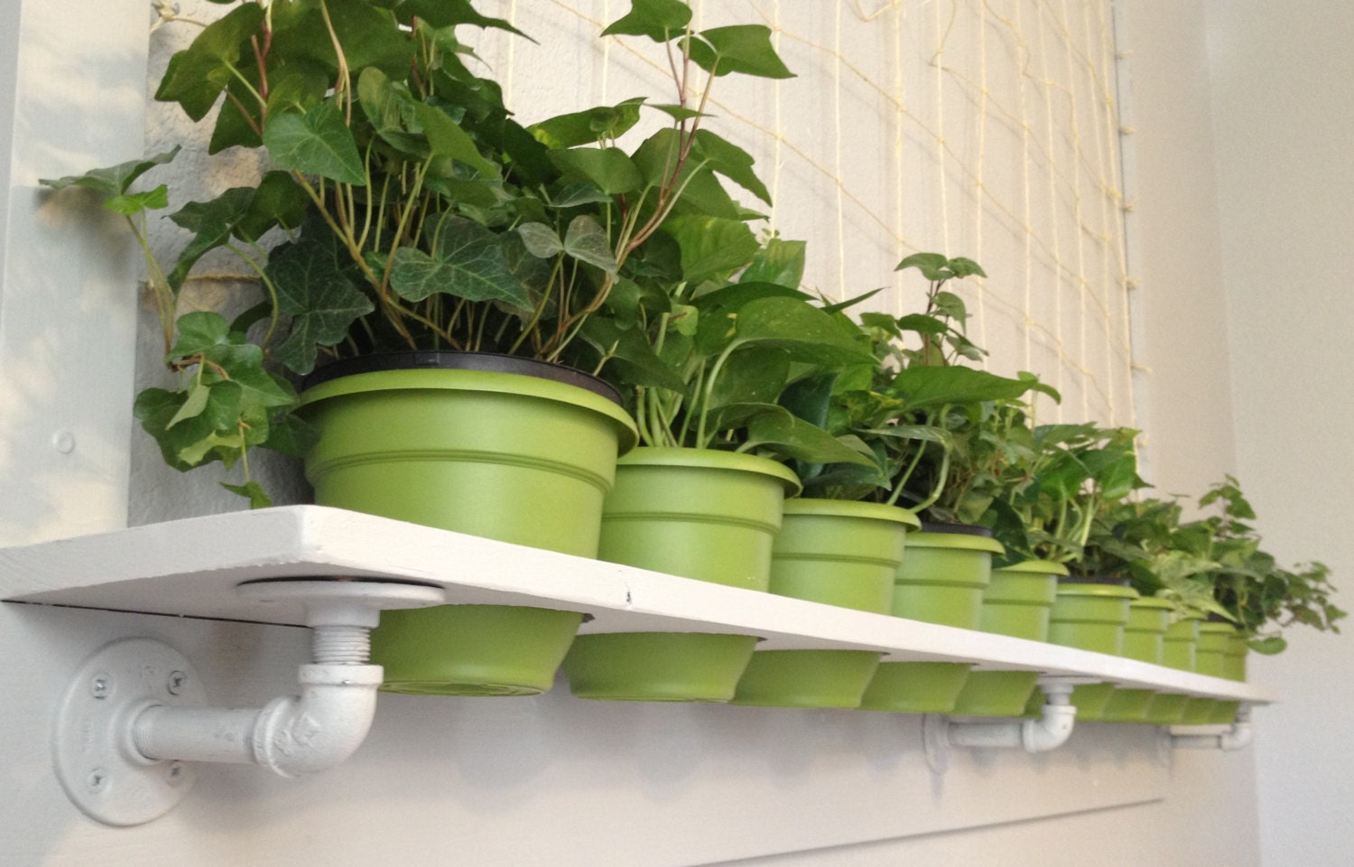 Plant Wall Shelf With Netted Frame For Indoor By