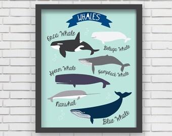 Nautical Home Decor Nautical Nursery Wall Art - Whales Art Print - 8x10 or 11x14