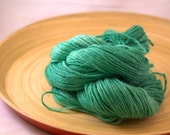 Emerald City DK Weight Hand Dyed Reclaimed Yarn