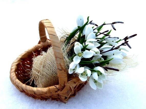 Home decor, floral arrangement, basket with white snowdrops, white
