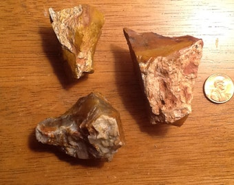 Petrified Wood Refrigerator Magnets Set of 3 ((6))
