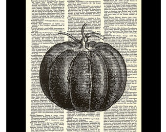Pumpkin Etching - Fall Autumn Halloween Art Dictionary Art Print Poster on Vintage Dictionary Page