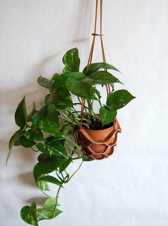 Reserved Leather Hanging Plant Holder In Brown