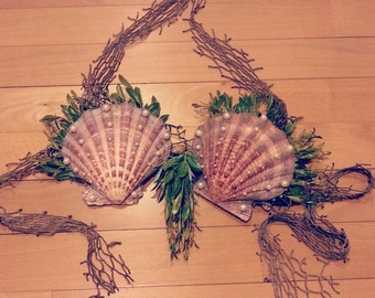 Seashell Bra