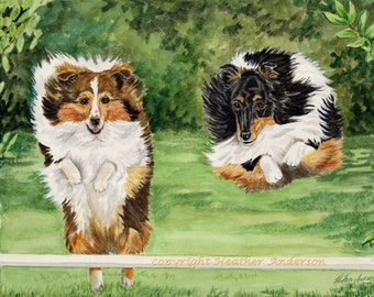"4 Sheltie Greeting Cards, w/ envelopes,  ""Jump for Joy"", 5 1/2"" x 4 1/4"" Heather Anderson animal artist"