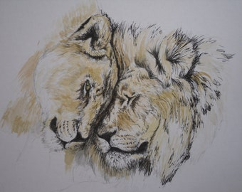 Watercolour and ink painting of a pair of Lions