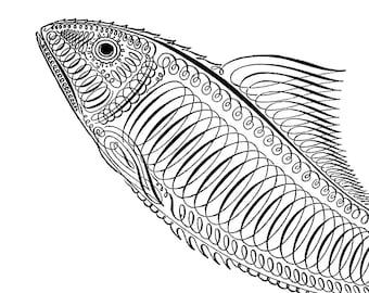 Antique SPENCERIAN FISH CALLIGRAPHY Instant Download image Fancy Penwork Penmanship