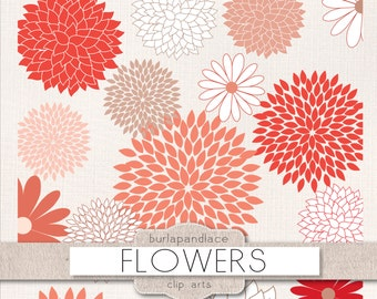Clipart flower cliparts, dahlia, coral red, dahlia clipart, chrysanths, mum flower, flower cliparts, red, coral red, beige flowers clip arts