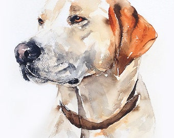 custom pet portrait, original watercolour painting, dog or cat painting, affordable, unique gift/present.
