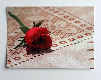Postcard with pink rose and vintage lace