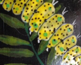 Dotted yellow catapiller