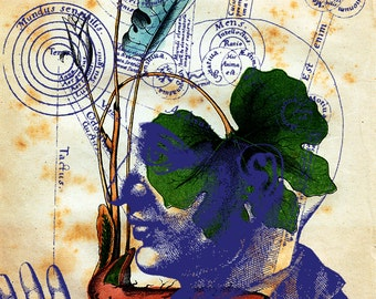 """giclee print -""""Mundus"""" featuring botanical art and  alchemical diagrams"""