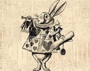 Antique Herald White Rabbit Vintage Print Alice in Wonderland Wall Art Print with Vintage Script Paper Background No.1324 B4 8x8 8x10 11x14