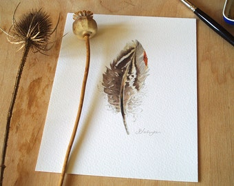 Watercolour Feather Painting Art Print 5x7 inches
