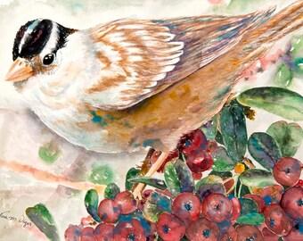 Sparrow 8x10 Giclee Print