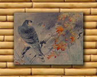 Hawk Print Asian Bird Wall Art Japanese Poster Art Decor Japan Retro (J161)