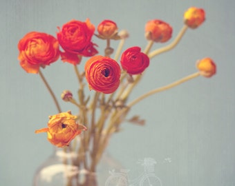 Fine Art Photograph, Ranunculus Photo, Botanical, Orange, Bouquet, Teal, Spring, Flower Art, Umber, Home Decor, Flowers Square 8x8 Print