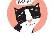 Adopt Cat bumper sticker choose black or gray cat