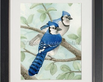Bird Tree with Blue Jays - archival watercolor print by Tracy Lizotte