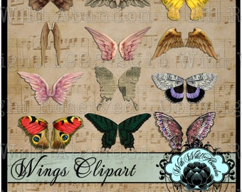 Wing Clipart, Wing Digital Collage Sheet, Fairy Wing Clipart, Angel Wing Clipart, Altered Art Supplies,