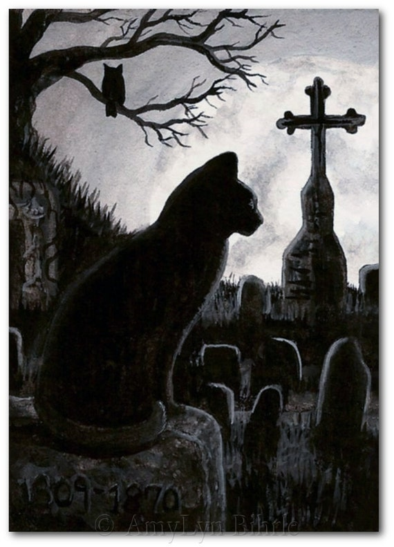 Black Cat Society Full Moon Cemetery Owl By Amylynbihrle