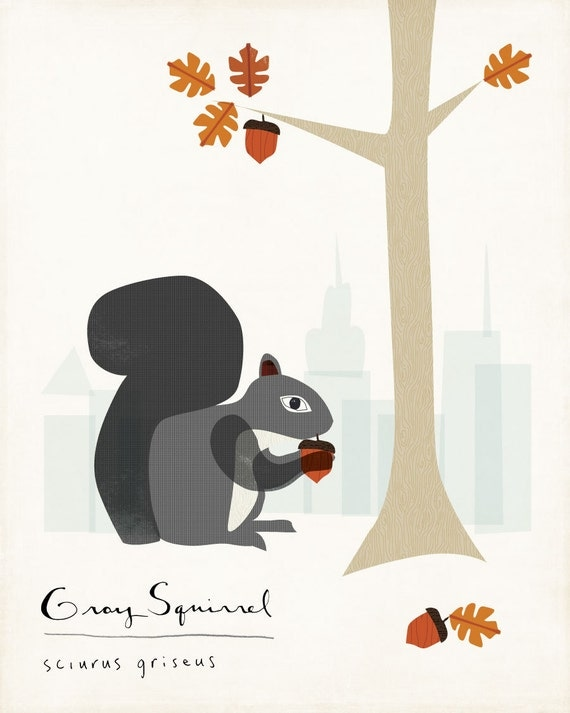 Grey Squirrel Limited Edition Print