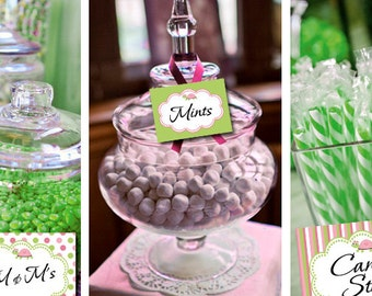 Turtle Girl Candy Table Buffet Label Party Printable - Stick to Your Story