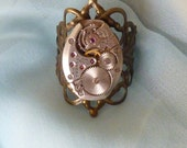 I Could Go Either Way Steampunk Ring