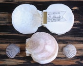 Watercolor Sketchbook Shell Book - Large Blank Handmade Notebook Made of Local Cape Cod Sea Scallop Shells
