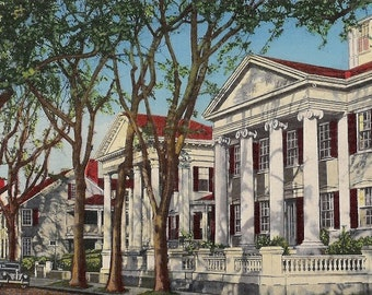 Nantucket Colonial Homes - Vintage Postcard Massachusetts - Colonial Architecture