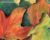 "Maple leaves in fall colors of orange and yellow with a red ladybug - Art Reproduction (Print) - ""Autumn Leaves"""