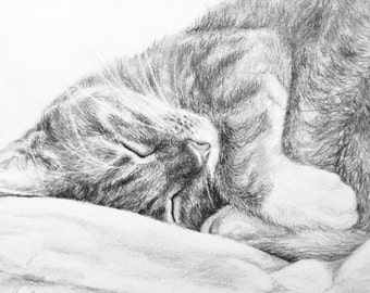 Pet Portrait Drawing - Handmade Custom Pencil Portraits - Animal Portrait - from your Photo - cat, dog, bunny, horse, etc.