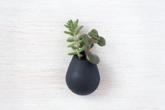 Wearable Planter No. 6, Lapel Pin, in Black
