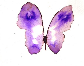purple and white butterfly original watercolour painting