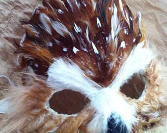 Northern Saw Whet Specialty Custom Owl