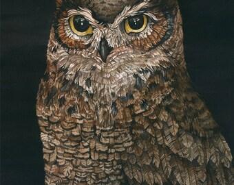 Owl | Watercolor | Archival Print