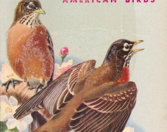 Birds: A Guide to the Most Familiar American Birds (A Golden Nature Guide)
