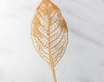Single Leaf Letterpress Card Set