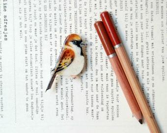House Sparrow, bird brooch, bird badge, bird jewelry, hand painted brooch, bird pin.