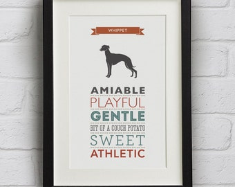 Whippet Dog Breed Traits Print - Gift for Whippet Lovers
