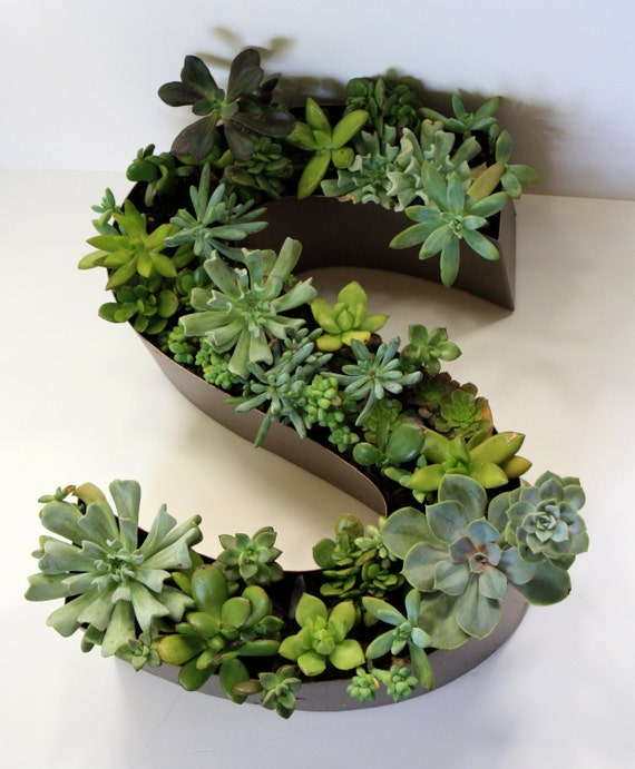 items similar to custom made monogram succulent planter With monogram letter planter