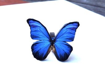 Blue butterfly ring,  Butterfly Jewelry,  Butterfly wing ring, Summer jewelry, Insect jewelry, Christmas gift
