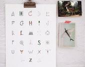 Woodsy Alphabet Print