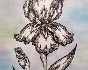 "15"" x 20"" Original Painting, Pen and Ink Flower Drawing over Acrylic Paint on Paper, Framed"