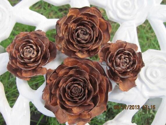 Cedar Pine Cones 30 Rose Pine Cones or Cedar