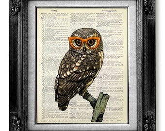 Popular items for owl decor on Etsy