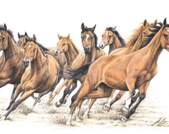 Trakehner Horses - Fine Art Print