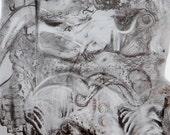 Image numérique- ''Sirène''