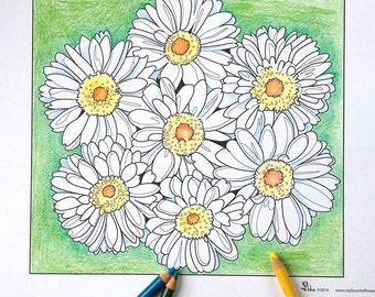 daisy coloring page, daisies coloring sheet, instant download coloring pages, flower coloring sheet, daisy art, adult coloring page