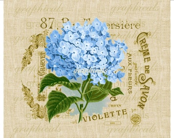 Blue French hortensia hydrangea instant digital download image for iron on fabric transfer burlap decoupage paper pillow totes Item No. 615B